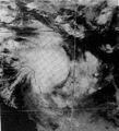 Cyclone Winifred.png