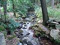 Dürrhennersdorfer Wasser Mike-Krüger 080726 2.JPG