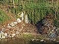 DD-Bienertgarten-Wasserauslauf.jpg