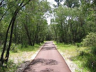 Dalyellup, Western Australia - Tuart Walk.