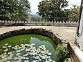 Dambulla, Sri Lanka - panoramio (32).jpg
