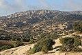 Dana Nature - panoramio (5).jpg