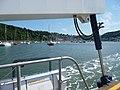 Dartmouth , Higher Ferry on the River Dart - geograph.org.uk - 1924982.jpg