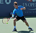 David Nalbandian at the 2010 US Open 03.jpg