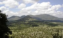 Davis Mts Nima (2).JPG