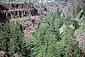 Deschutes National Forest, Mill Creek, Confederated Tribes of Warm Springs (36951200481).jpg