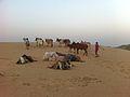 Desert Herders (6652767601).jpg