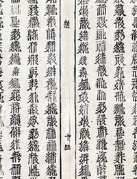 200px-Detail_of_Tangut_text_with_inverted_character