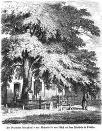Die Gartenlaube (1857) b 261.jpg