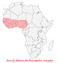 Difusionsenegal.jpg