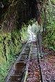 Disused Ngakawau railway tracks through 'The Verandah' on Charming Creek Walkway.jpg