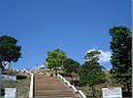 Divine Mercy Hills, 200 steps to the top..jpg