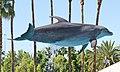 Dolphin 8 (15711474586).jpg