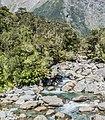 Donne River in Fiordland National Park.jpg