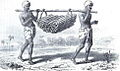 Douglas Hamilton, Alan, plate IX- Carrying Firewood.jpg