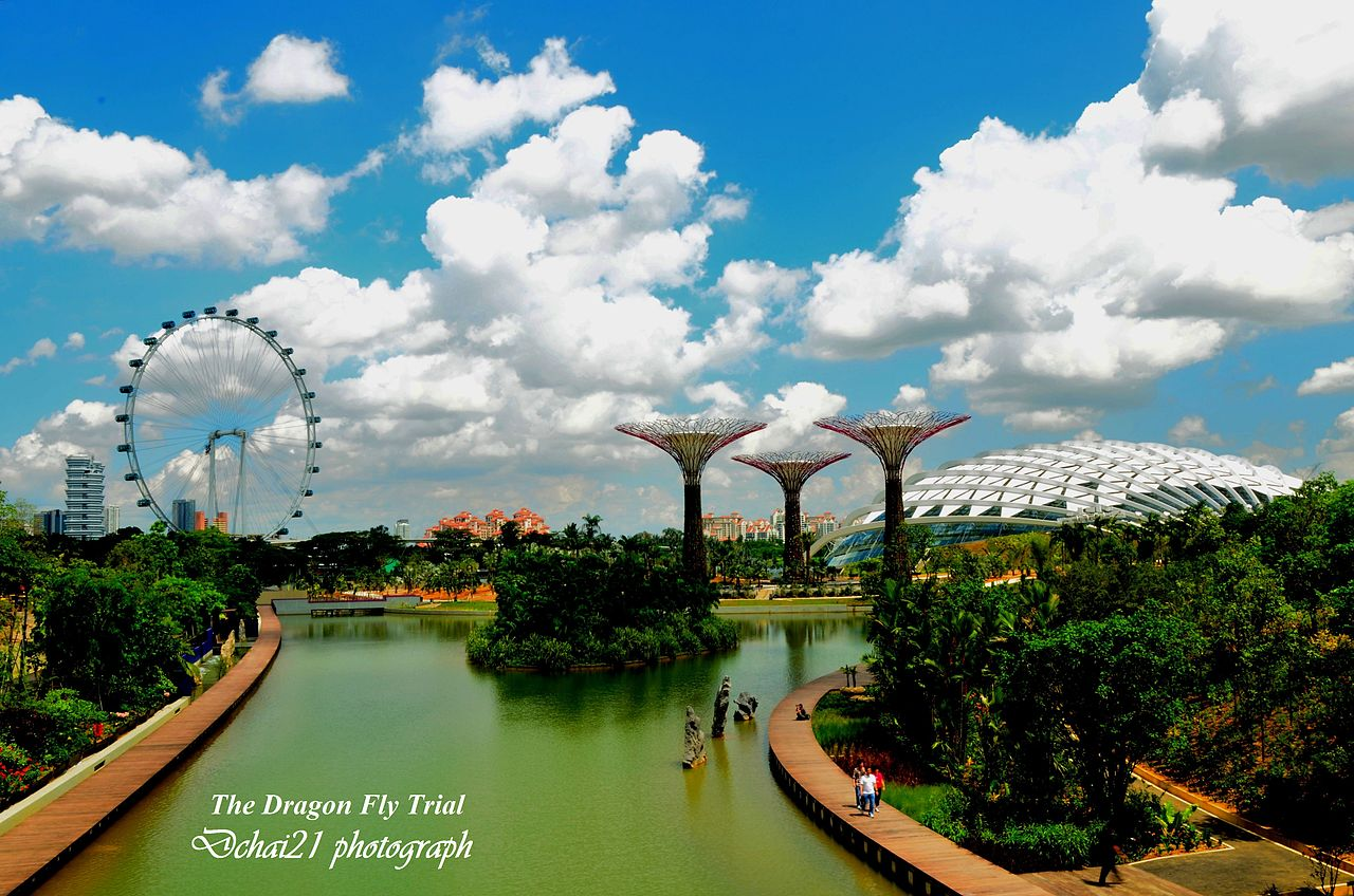 filedragonfly lake gardens by the bay singapore