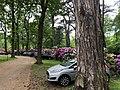 Duinrell parkeerterrein P4.jpg