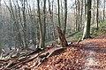 Duivelsberg P1420595.jpg