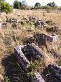 Duraton - Necropolis Visigoda.jpg