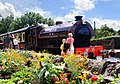 Earl David at Avon Valley Railway - panoramio.jpg