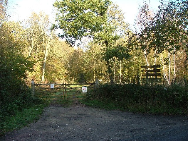Eaton Woods Nature Reserve N Notts - geograph.org.uk - 83270