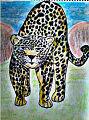 El Jaguar (Panthera onca) - Katya A. Caravantes López.jpg