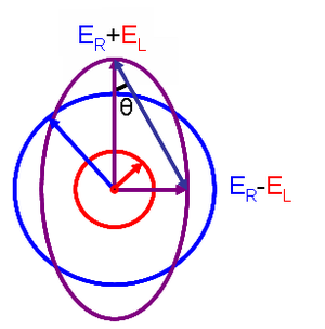 Circular dichroism - Elliptical polarized light (violet) is composed of unequal contributions of right (blue) and left (red) circular polarized light.