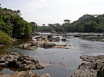 River lined by tropical vegetation. Many stones are found in the river.