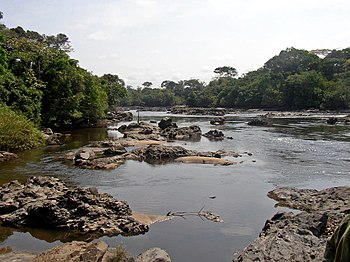 Epulu river flowing through the Okapi Fauna Re...