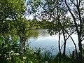 Etangs du Rheu - panoramio.jpg