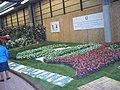 Euroflora 2006 09.jpg