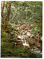 Fairy Glen Waterfall, the bridge, Penmaenmawr, Wales LOC 3752419608.jpg