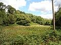 Fallow Land - geograph.org.uk - 520613.jpg