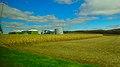 Farm near LaRue - panoramio.jpg