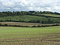 Farmland near Baydon - geograph.org.uk - 256728.jpg