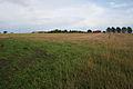 Farmland near Thorpe - geograph.org.uk - 251284.jpg