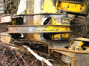 Feller buncher - Closeup of grab arms, with chainsaw for felling trees