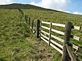 Fence and gate - geograph.org.uk - 467322.jpg