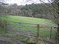 Field Gate and Coed Cochion - geograph.org.uk - 346543.jpg