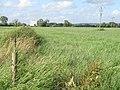 Field near Melksham - geograph.org.uk - 199261.jpg