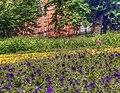 Field of colors (8109781110).jpg