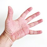 Finger = 5 open.JPG
