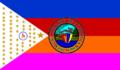 Flag of Alimodian, Iloilo.png