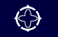 Flag of Toyota Nagano.png