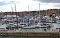 Flickr - ronsaunders47 - A BUSY COWES WEEK. AUG 2010. No 4.jpg
