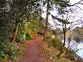 Flickr - ronsaunders47 - A WALK BY THE LAKE.jpg