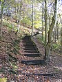 Flight of steps at Moss Valley Country Park - geograph.org.uk - 1039018.jpg
