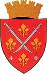 Floresti Shield.jpg