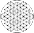 Flower of life-4.33level.png