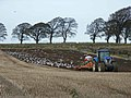 Follow the tractor - geograph.org.uk - 1028034.jpg